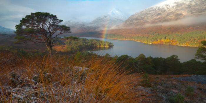 Glen-Affric-in-autumn-3